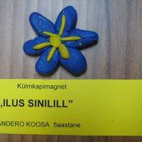 image img_4719-jpg