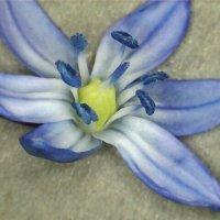 image 2013-04-25-153813-jpg