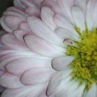image 2014-04-29-162512-jpg